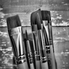Thick and thin (Jon Bowles) Tags: brushes thick thin paintbrush mono