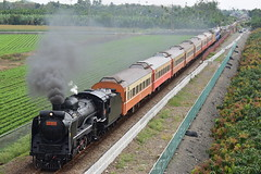 5874次_南州北_2018.02.25 (YC.H_APu) Tags: train railway