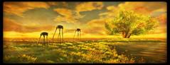 """Hey Mister Dalí, Sir!"" (Ursula Floresby...Kidnapped By RL) Tags: sl slart sllandscape landscape surreal surrealism dali salvadordali elephant nature zumajupiter mysticalfaeforest textured texture sunset elvenshire grass sky tree animal"