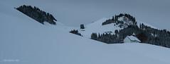 Hiver en Gruyère (Switzerland) (christian.rey) Tags: chapelle payage hiver monchrome prédelessert fribourg gruyère charmey landscape winter sony alpha a7r2 a7rii 1635 préalpes neige gris couvert