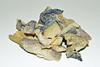Fried Fish Skin (chooyutshing) Tags: food snack friedfishskin crispy