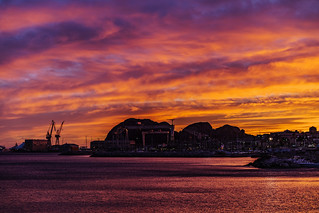 Sunset and Harbor