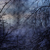 Through the Hedge (Ali's view) Tags: cold blue icm intentionalcameramovement winter darkness hawthorn hedge sunset multipleexposure layers entangled twigs