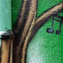 """"""" ♫♪♩♬♫♫ Hump-Day-Sound ♩♪♬♫♪♪♬♩ """" (Petra U.) Tags: wallpainting graffiti karlsruhe irishgreen music sound notes wall gutter wednesday seeyouatscruffy´stonight"""