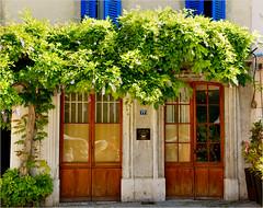 the doors.........77 (atsjebosma) Tags: doors deuren ddd donderdagdeurendag blauweregen shutters luiken blue blauw flowers bloemen atsjebosma saillans lafrance frankrijk reflections reflectie