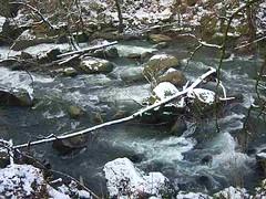 Wildwasserfälle (Jörg Paul Kaspari) Tags: irrel irrelerwasserfälle eifel südeifel naturpark wildwasser prüm dieprüm fliesgewässer bach winter schnee natur nature wildwasserfälle stromschnellen video