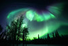 North to Alaska (yan08865) Tags: forest sky alaska pavlis aurora colors northern lights wood landscape space nature winter darkness solo travel earth tree usa fairbanks environment snow light show