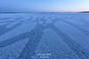 Find the girafe :) (g u i l l a u m e) Tags: ice blue finland frozen sea winter iceflowers bluehour twilight