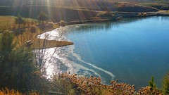 Ice and SunShine Upon the Water! (jlynfriend) Tags: phone photos trees brush plants fields water bird geese ice flowers landscape sunshine rays reflection bench table