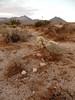 Ridgecrest_2017 68 (dever_brett) Tags: california ridgecrest desert nissansentra