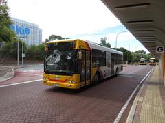 IMG_1138 (RS 1990) Tags: modbury teatreegully teatreeplaza interchange bus adelaide southaustralia thursday 1st february 2018