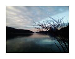 De profundis (nathaliedunaigre) Tags: lake lac lacdannecy lakeofannecy turquoise profondeurdechamp deprofundis profondeur eau water reflets reflections nature landscape paysage