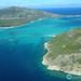Risky business: exposure to oil impairs reef fish behaviour