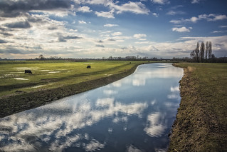 Elst, Space for the river 2