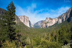 Yosemite Tunnel View (Bill-Metallinos) Tags: park trees forest rainbow travel summer natural california green national yosemite el capitan nature photograph metallinos