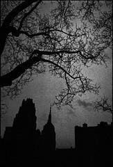 gotham (V-A-B) Tags: blackwhite film analog trix400 diafine manhattan newyorkcity bryantpark