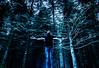 La Forêt Enchantée (patdesrochers1) Tags: adesrochersphotocom canada gaspesie patd patrickdesrochersphotographe quebec desrochersphotocom desrochersphotographegmailcom facebookcomdesrochersphoto outside photographie photography projet voyage â©patrickdesrochers