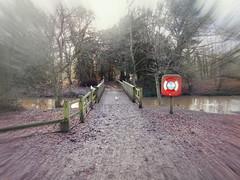 Rufford Park (kelvin mann) Tags: bridge ruffordcountrypark rufford ruffordpark water nottinghamshire