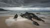 Wild ocean (hjuengst) Tags: ocean indianocean plettenbergbay naturesvalley rocks clouds wave longexposure wideangle