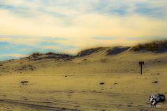 IMG_0018 (Sickbones_photography) Tags: beach ocean seaside nj newjersey blackwhite color sand water dream arcade
