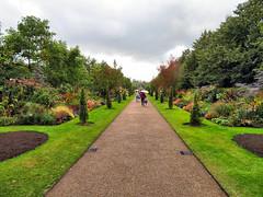 Regent's Park, London, England (duaneschermerhorn) Tags: park trees shrubs lawn path pathway hedges flowers people cloudy umbrellas