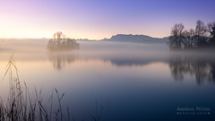 A7_05448_s (AndiP66) Tags: gamma insel island sursee luzern lucern blauestunde bluehour nebel dunst fog mist sonnenaufgang sunrise sonne sun morgen morning sony sonyalpha 7markii 7ii 7m2 a7ii alpha ilce7m2 sigma sigma24105mmf4dghsmart sigma24105mm 24105mm art amount laea3 andreaspeters