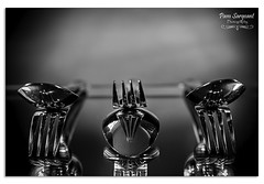 Spoons and Forks (Pamsar) Tags: spoons forks cutlery stainless steel reflections abstract kitchen tableware close up blackandwhite monochrome mono stilllife nikon d610