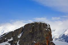 Brown_2017 12 11_3120 (HBarrison) Tags: harveybarrison hbarrison antarctica antarcticpeninsula paradiseharbor brownstation arctic antarctic arcticantarctic