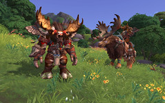 World-of-Warcraft-Battle-for-Azeroth-300118-018