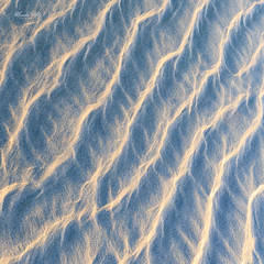 sand ripples on a beach (Masako Metz) Tags: sand ripples beach abstract pattern lines nature creation sea ocean oregon coast pacific northwest usa america waves art