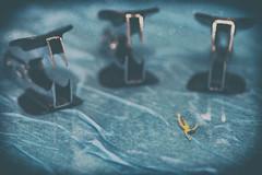 El ataque de los quitagrapas asesinos!!! (sairacaz) Tags: canon eos70d tamronaf90mmf28spdimacro macro miniaturas miniatures quitagrapas asesino killers nadar swimming stapleremove vigo galicia