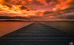 Pier of the trabucador,Delta del Ebro (JesusLobato) Tags: atardeceres atardecer beach muelle embarcadero trabucador playa largaexposicion nikond3100 filtros lucroit nd10 degradado delta deltadelebro ebro tokina