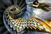 Add That's Magic (Sean Batten) Tags: themagiccircle london england unitedkingdom gb spiral staircase nikon d800 1424 blue magic euston city urban magicians