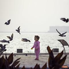 Beautiful Morning - Doha Beach (ablbaset) Tags: doha qatar