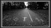 1 of 5 Winter depressing photos in the city (5) (andantheandanthe) Tags: melancholy gloomy gloomyness winter dull dark gloom melancolic sad rain rainy terrible depression depressing glooming dispirit downhearted grey city tedious dusty uninteresting unpleasant walkway footpath leafs cycle cyclepath path