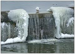 Icy Falls (donbyatt) Tags: furztonlake miltonkeynes ice snow water abtstract
