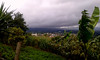 Vista hacia San Isidro, provincia de Heredia, durante caminata/ View towards San Isidro, Heredia province, during a hike (vantcj1) Tags: nubes agricultura tormenta vegetación naturaleza pueblo rural campo caminata cercado