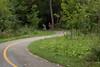july 2016 lake katherine (timp37) Tags: path bike bicycle illinois summer july 2016 lake katherine palos