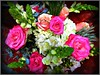 Bouquet of Flowers . (** Janets Photos **) Tags: uk plants flora flowers colours bouquets