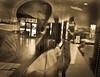 inside-outside-me--my-oly331_6853064772_o (mcreedonmcvean) Tags: angelica fish food i35parmer peopleiknow zedesresraurant angelinglassball clouds cloudsapproachinghomeonhightechridge dramtic fountainpenmacro pool redcarp selfportrait shootingthroughwindows water