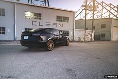 CLEAN / Vossen Tesla Model 3 (Mike M. Photos) Tags: mikemphotos vossen vossenwheels tesla model3 sony a7rii sonya7rii dallas clearbra wrap thecleantesla speedshield