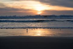 wait (Big_Joker) Tags: 500px sunrise sunset sun twilight seascape dawn dusk dramatic sky jetty horizon over water moody lake