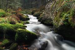 Ruisseau du Mourgouillou (jpto_55) Tags: ruisseau ruisseaudumourgouillou eau torrent pyrénées xe1 fuji fujifilm fujixf1855mmf284r ariège france ngc flickrunitedaward