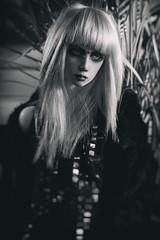 Noir (nebuloid) Tags: dollshe dollshebernard daiquiri nebuloidbjd gothicguy