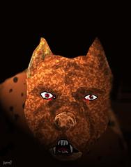 Killer (ARRRRT) Tags: killer arrrrt pitbull romulusandremus
