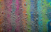 colorful Bubblescape (stefanfricke) Tags: color bubbles oil water sony ilce7rm2 sel50m28