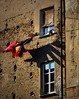 un'ombra coi baffi (fotomie2009) Tags: savona santuario shadow ombra panni stesi finestre widows window liguria italy italia