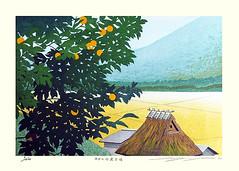 Satsuma mandarin orange (Japanese Flower and Bird Art) Tags: flower satsuma mandarin orange citrus unshiu rutaceae seiji sano modern woodblock print japan japanese art readercollection