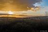 Coucher de soleil sur les Hautes Fagnes-10 (jipebiker) Tags: coucherdesoleil sunset hautesfagnes belgique belgium nuage cloud fagne fens ciel sky tree heurebleue bluehour landscape paysage