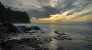 Sunrise morning on Botanical Beach.